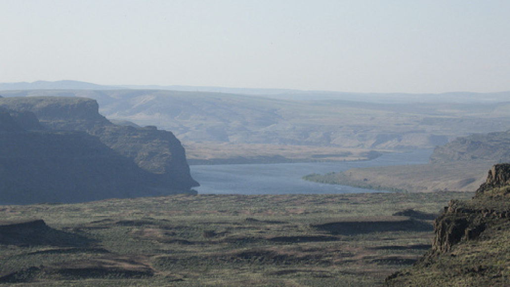 picture 5 CoS at Sasquatch!: Day One