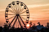 Sunrise-AmandaKoellner-bonnaroo2014