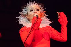 Björk // Photo by Santiago Felipe