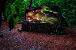 Art Installations in the Woods // photo by Lior Phillips