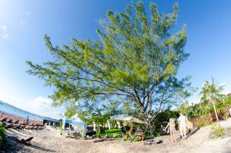 KAABOO Cayman, photo by Ben Kaye