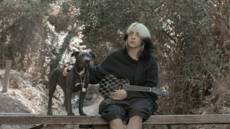 Billie Eilish Fender Ukele Dog Shark Signature